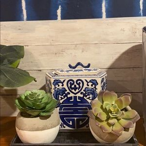 Pair of cement potted faux succulents
